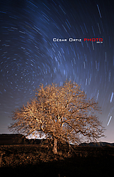 Estrellas13.jpg