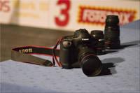 MG_1292.jpg